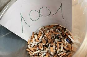 © Kinderbüro 1.001 gesammelte Zigarettenstummeln beim Spielplatz im Stadtpark